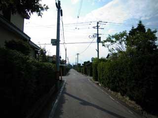 aomori_0003.jpg