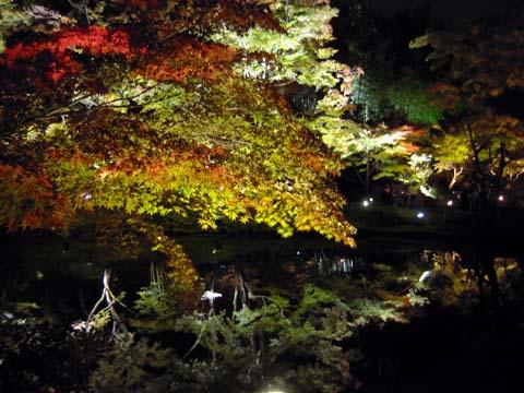 himeji_kyoto_100.jpg