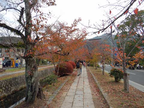 kyoto_012.jpg