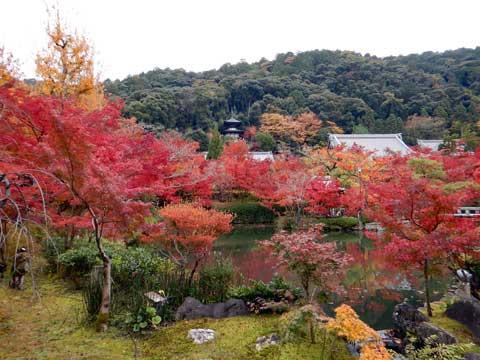 kyoto_036.jpg