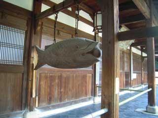 kyotonara044.jpg