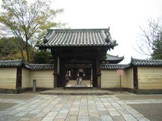 kyotonara056.jpg