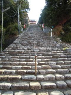 matsuyama01.jpg