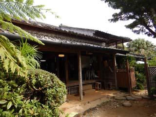 tanegashima_008_s.jpg