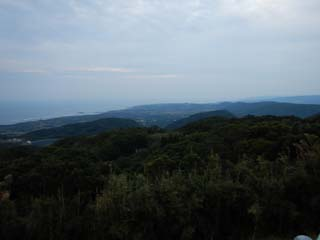 tanegashima_044_s.jpg
