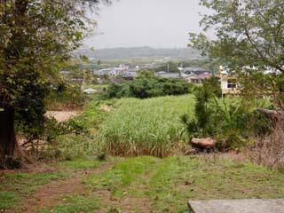 tokunoshima_029.jpg